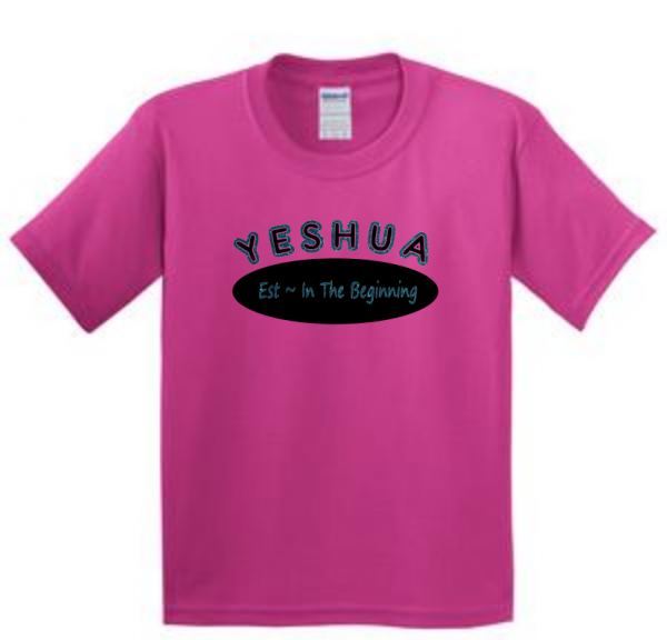 Yeshua established in the beginning