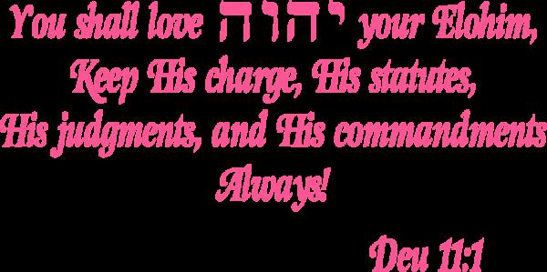 Love YHVH decal